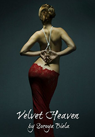 The cover of Velvet Heaven.
